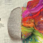 4 mythes over leren en onderwijs